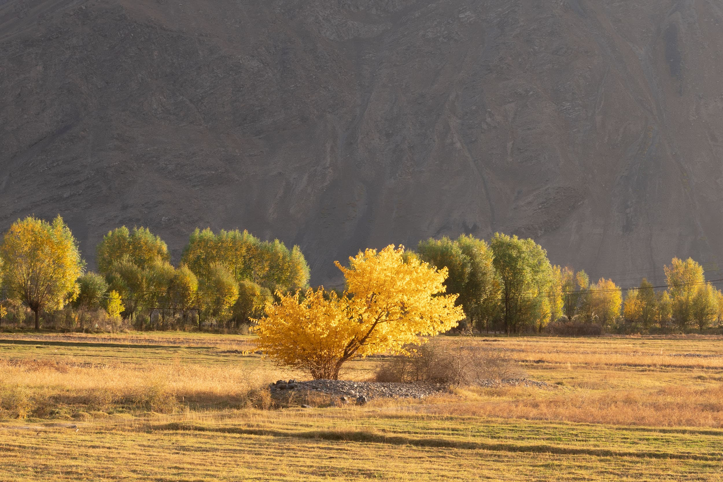 Colorful Pamir Highway