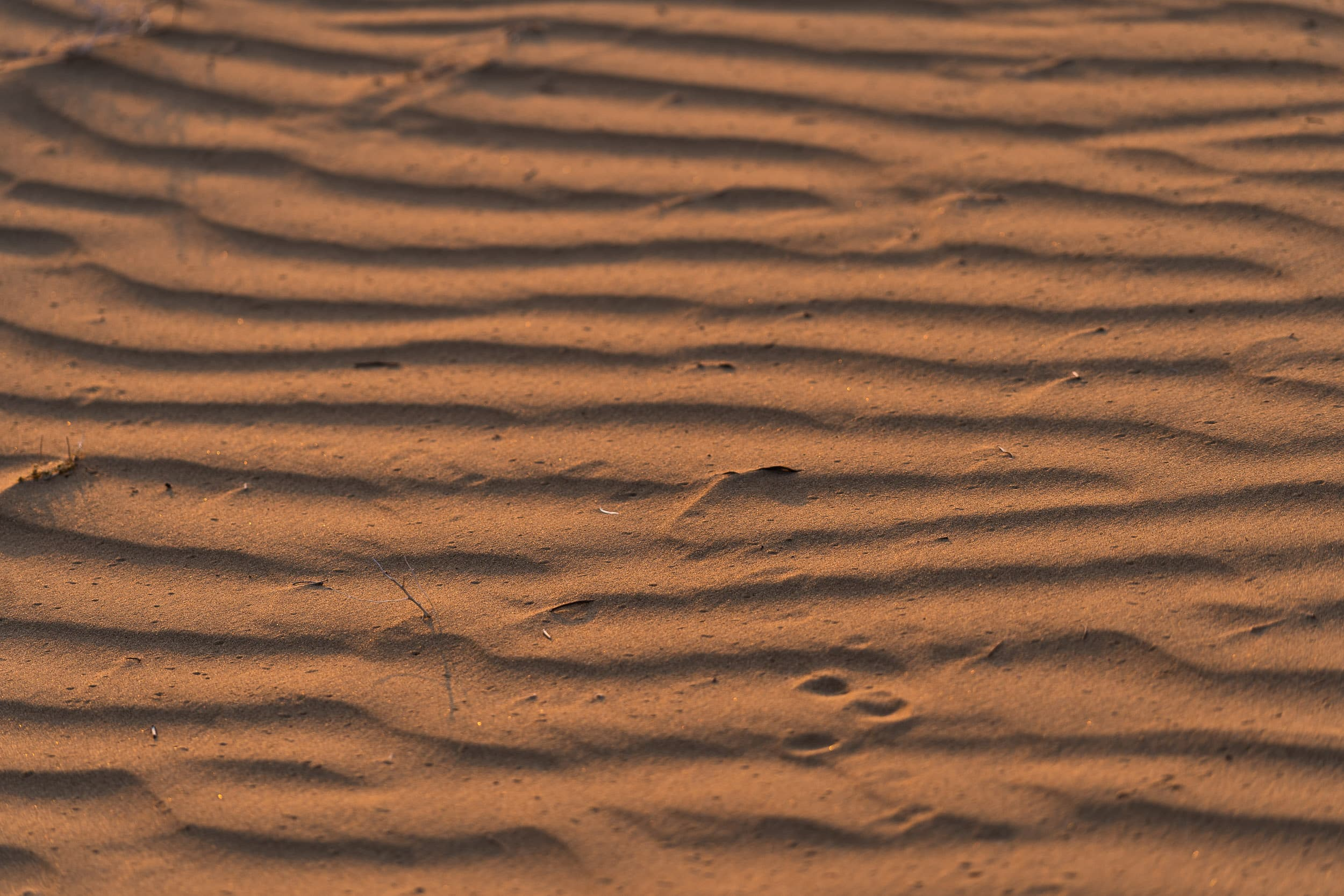 patterns of the desert